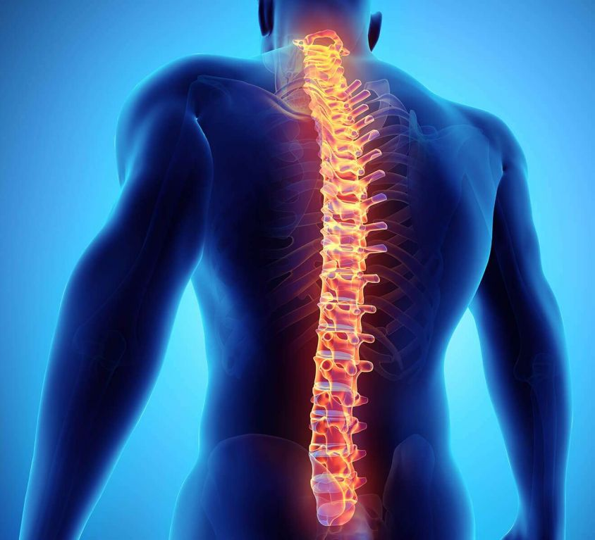 Descomprensión vertebral/Spinimed®
